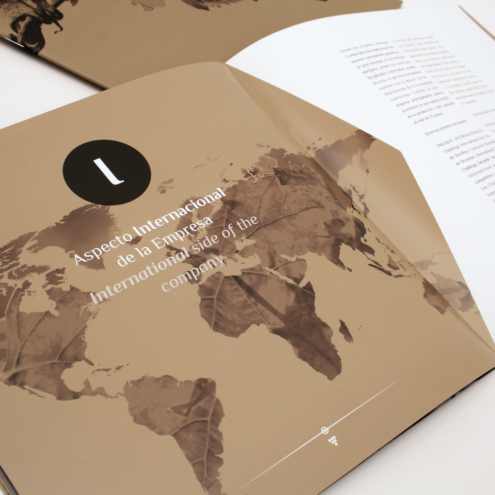 diseño catalogo bodega coviñas armoder